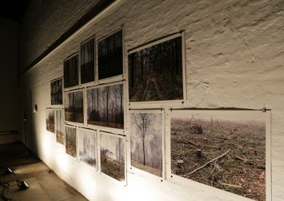 Rasselmania Vernissage Hambacher Forst (100)